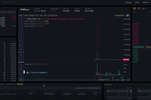 Binance Showcase Decentralized Exchange Progress in Latest Video